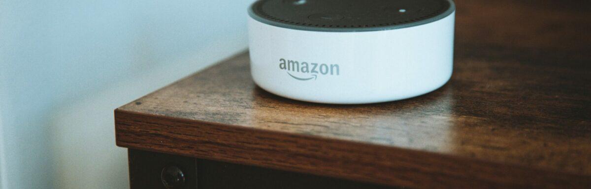 Amazon Alexa unit, mysteriously unsmashed