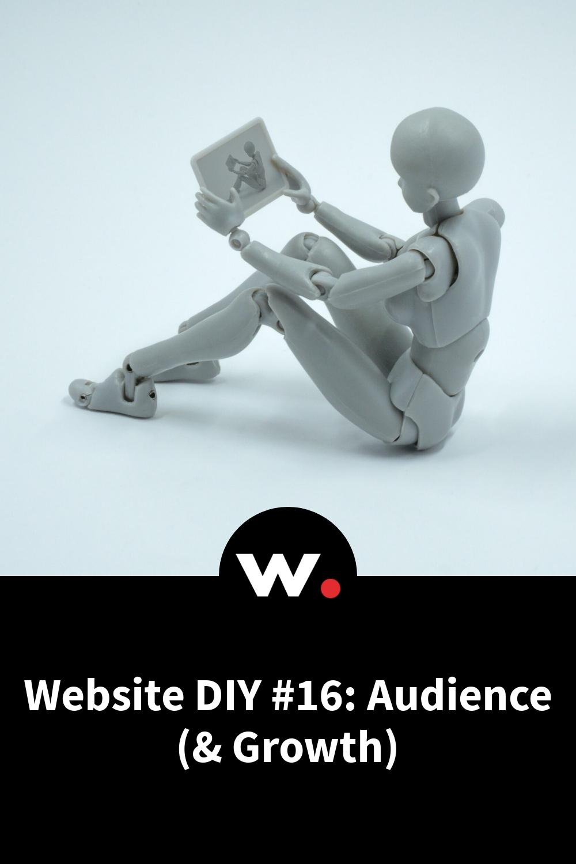 Website DIY #16: Audience (& Growth)
