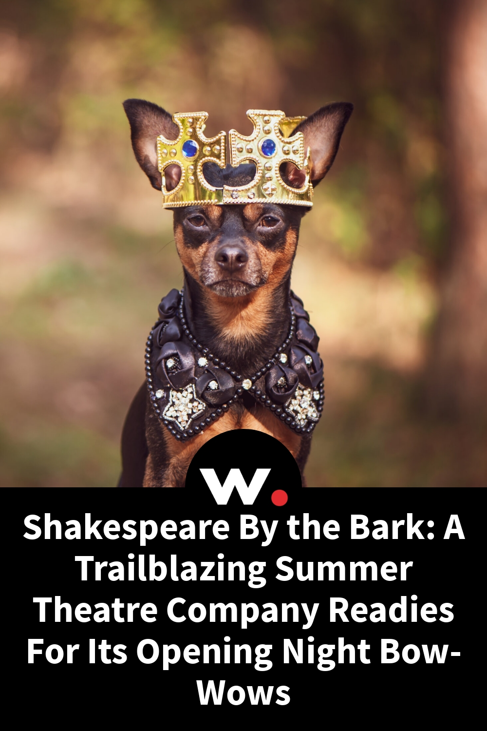 Shakespeare By the Bark: A Trailblazing Summer Theatre Company Readies For Its Opening Night Bow-Wows