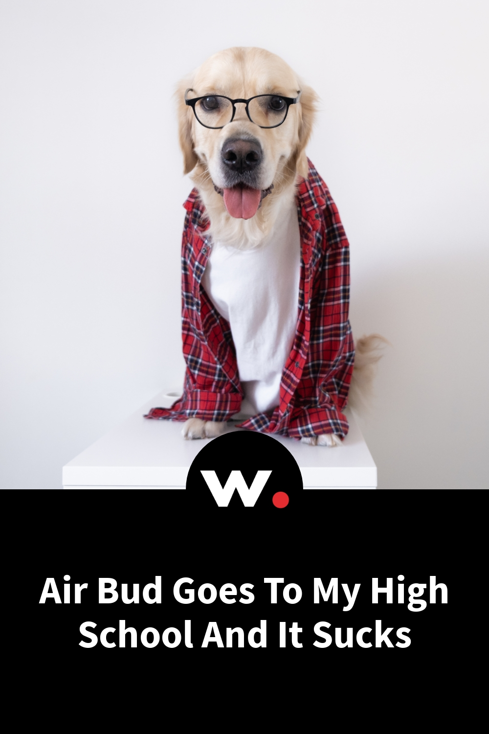Air Bud Goes To My High School And It Sucks