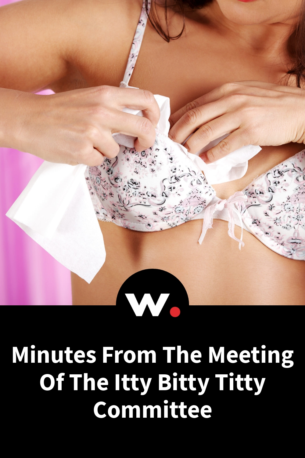Minutes From The Meeting Of The Itty Bitty Titty Committee